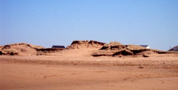 sand-dunes-at-thunder-cove-beach
